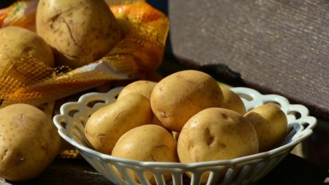Tips for Storing Potatoes All Winter Long