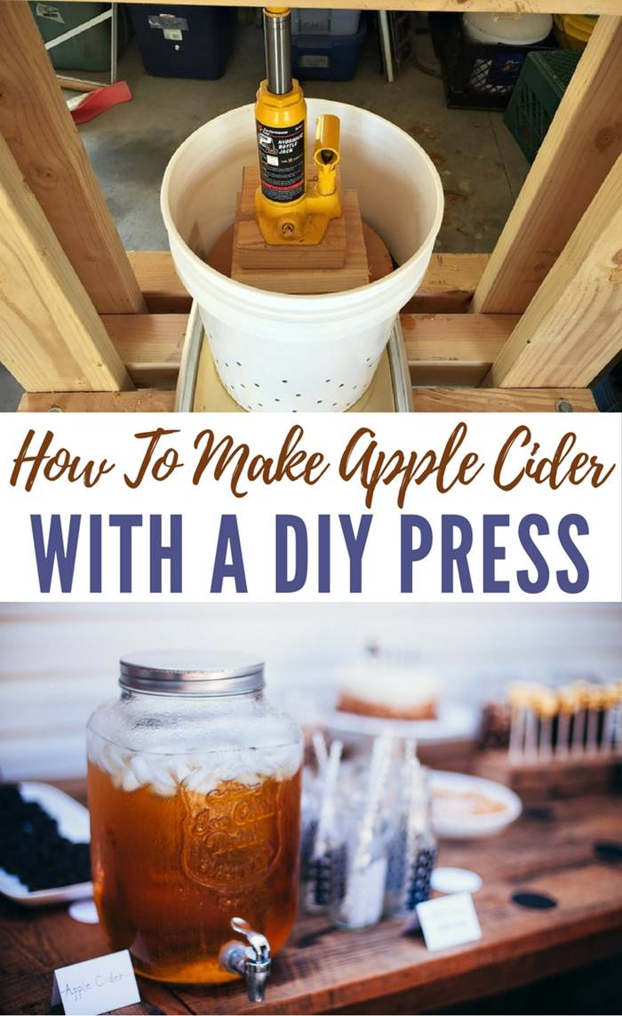How To Make Apple Cider with a DIY Press - If you are lucky enough to have apple trees or access to plenty of apples, you understand the struggle of having more fruit than you know what to do with. One option is to make cider, which is perfect for the upcoming holiday season. Image by growforagecookferment.com
