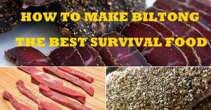 How To Make Bitlong - The Best Survival Food — Biltong has a shelf life of 2 to 4 years, so this is a smart way to stock your food stores. The recipe is simple, and you can use pretty much any meat.