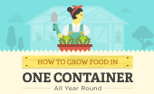 How To Grow Food In One Container All Year Round — Space is at a premium when you're making preparations for harsher times, and if you don't have such a roomy abode to begin with then the idea of growing your own fruit and vegetables can feel highly unviable. But eating plenty (and eating healthy) is going to be tough, and nobody's going to look out for you and your family better than yourself.