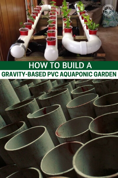 How To Build a Gravity-Based PVC Aquaponic Garden — Aquaponics, is a food production system that combines conventional aquaculture (raising aquatic animals such as snails, fish, crayfish or prawns in tanks) with hydroponics (cultivating plants in water) in a symbiotic environment. In normal aquaculture, excretions from the animals being raised can accumulate in the water, increasing toxicity.