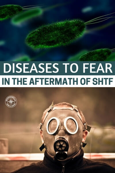 Diseases to Fear in the Aftermath of SHTF — This topic is very important and mostly gets overlooked. Prepare now because there will be no hospitals if SHTF.