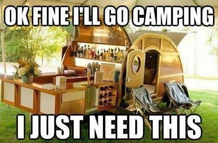 ok fine i'll go camping i just need this - meme