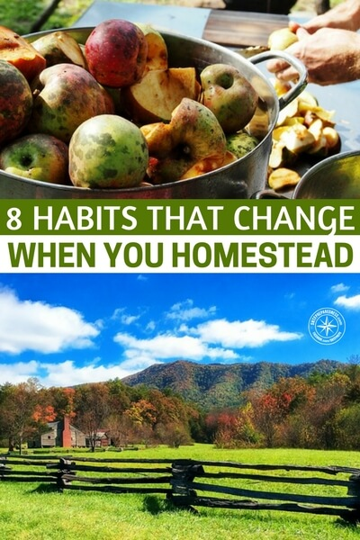 8 Habits That Change When You Homestead — When you homestead, or decide to start homesteading, you may not always realize what you're getting yourself into. Many people will bite off more than they can chew to start out and get overwhelmed
