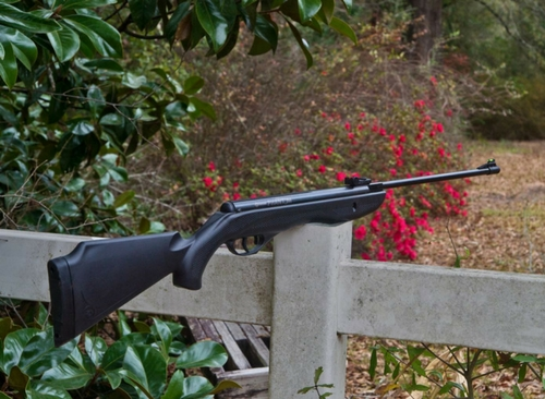 How to Be a Marksman Year-Round For Less! - Shooting an air rifle is a great hobby to keep your marksman skills sharp. While shooting .22 caliber ammo can chew through your wallet quicker than a honey badger, air rifle pellets are about as cheap as they come.