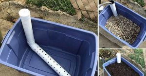 How To Make A Wicking Bed Container Garden - So, not only are you wasting your time, you're wasting your water. And as we've all learned, nothing in this world is free. You'll be paying for that wasted water at the end of the month whether your garden blooms or not. Check out how to make one of these amazing and fun container gardens.