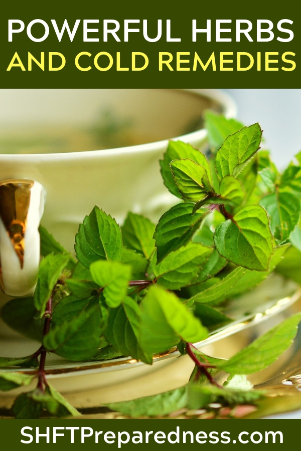 Herbal Cold and Congestion Remedies The time to prepare your herbal remedies is not in the depths of the winter. Depending on what remedies you are looking to use in the fall and winter season. Spring is really the best time to consider your remedies preparations.