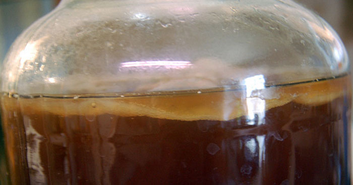 Make Kombucha - This article gives you the method on how to bottle your won Kiombucha.