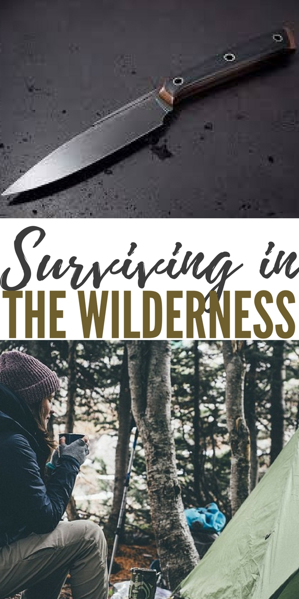 surviving in the wilderness A list of the best survival movies ever made from surviving natural disasters, nuclear wars, and shipwrecks to sci-fi alien invasions, zombie plagues, and apocalyptic fantasies these are the top movies about survival.