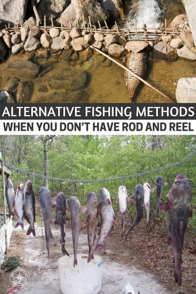 Alternative Fishing Methods – When You Don't Have Rod and Reel - This article offers some ways to catch fish without a rod and reel. You will be surprised to find out how many ways you can get this done.