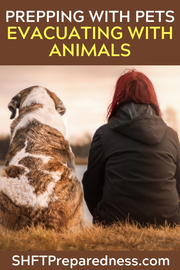 Prepping with Pets – Evacuating with Animals - When you consider preparing for pets I think there should be some very strict guidelines as far as when pets are priority and when you have to move on.