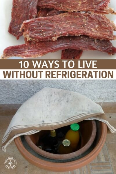 10 Ways to Live Without Refrigeration - This article goes into detail on how its possible to live and thrive without the convenience. Its possible but you will have to develop a new set of skills. The author does a great job of listing the practices and processes for making this work.