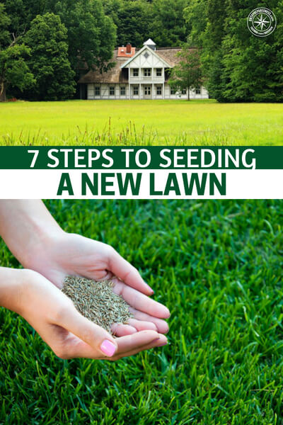 7 Steps to Seeding a New Lawn - The optimal time to plant grass seed is spring and fall, the cooler temperatures and rains help the seeds get a good footing and the cooler temperatures help keep crabgrass at bay so your seeds have a better time at rooting. All that being said, you can still plant your grass now. You will just have to make sure you keep the sol moist and watered.