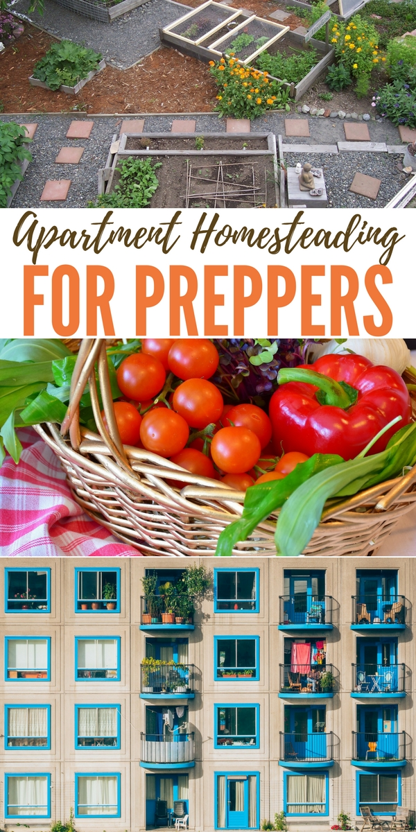 Apartment Homesteading For Preppers Lived In An I Was Still Uninformed Sheep