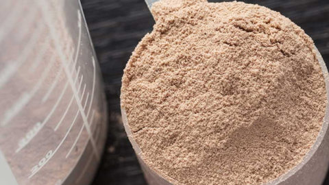 Should Preppers Store Protein Powder?