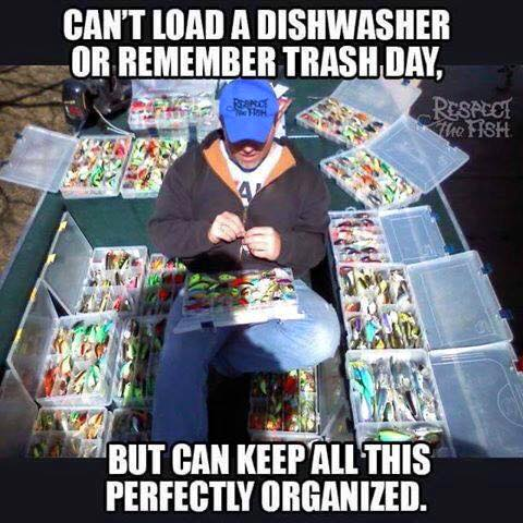 cant load a dishwasher or remember trash day but can keep all this perfectly organized