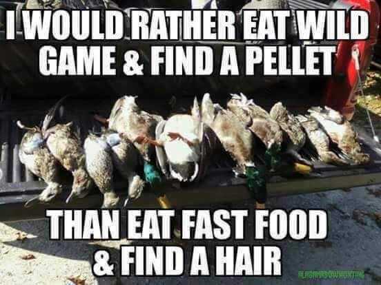 i would rather eat wild game and find a pellet than eat fast food and find a hair