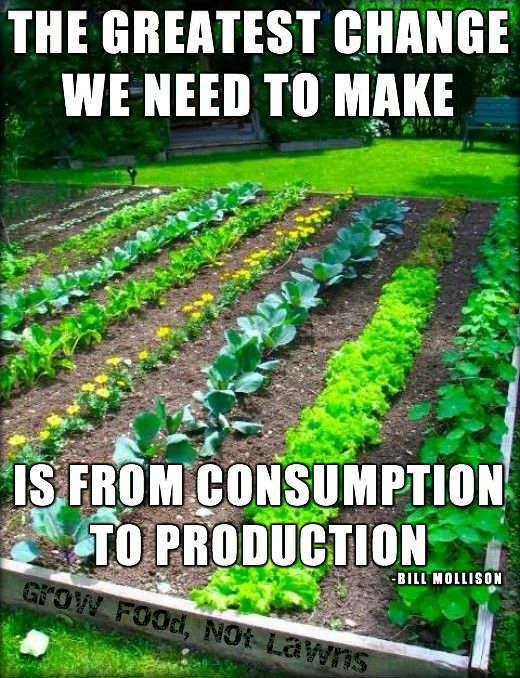 the greatest change we need to make is from consumption to production long