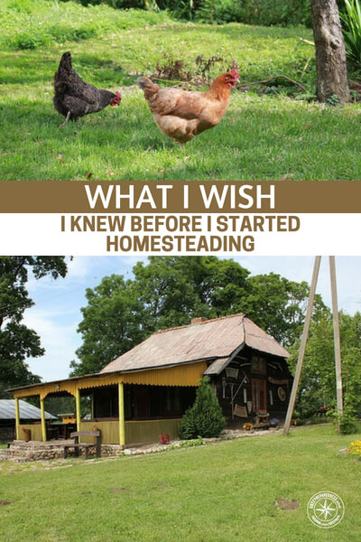 What I Wish I Knew Before I Started Homesteading -- How many people are stuck in a cubicle for 40 hours a week. When I am on the road I look at all the cars and wonder how many people are stuck in a life they hate and wishing they were on about 20 acres off the grid.
