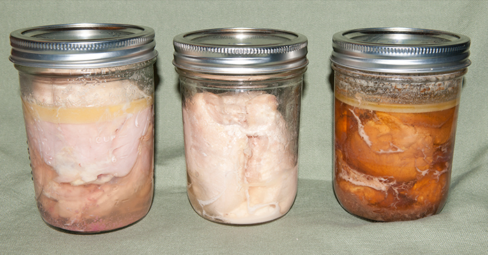Botulism and Canning – the Whys and Wherefores - This article is an in depth look at this bacteria and its effects. It also offers concrete examples of how to assure your food is not contaminated. The process of canning can be a bit dull when you are doing it for pounds and pounds of food. Still, follow these steps and guidelines to keep your family safe.