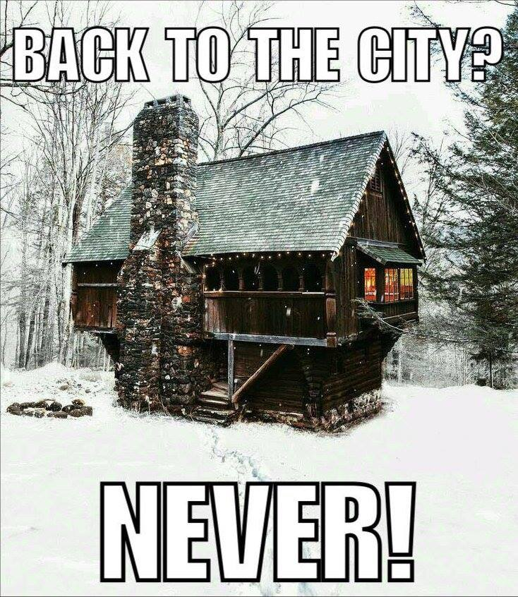 Back to the city? Never!
