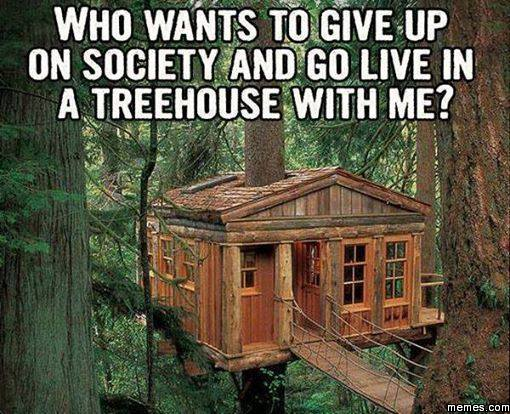Who wants to give up on society and go live in a treehouse with me?
