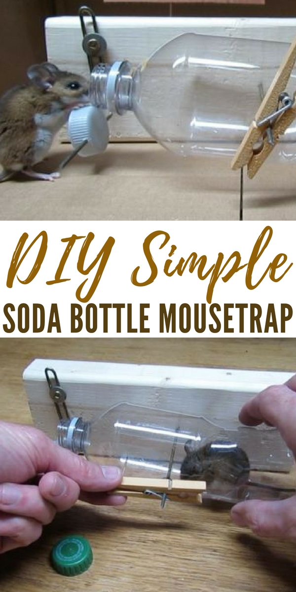DIY Simple Soda Bottle Mousetrap - This DIY mouse trap gives you some options when the mice start coming and carrying disease along with them. This is a simple trap that can be made with your trash! That makes it an even more interesting model.