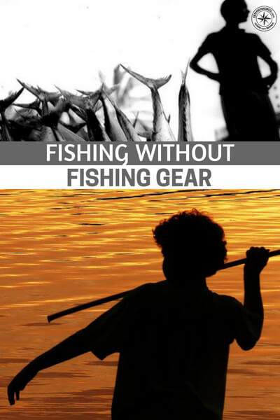 Fishing Without Fishing Gear - Fish have all you need to survive, caloric wise. They are full to the brim with omega 3 fatty acids and nutrients your body needs and probably the best of all, fish can be eaten raw if needed. Learn to catch them without being decked out in the latest gear.