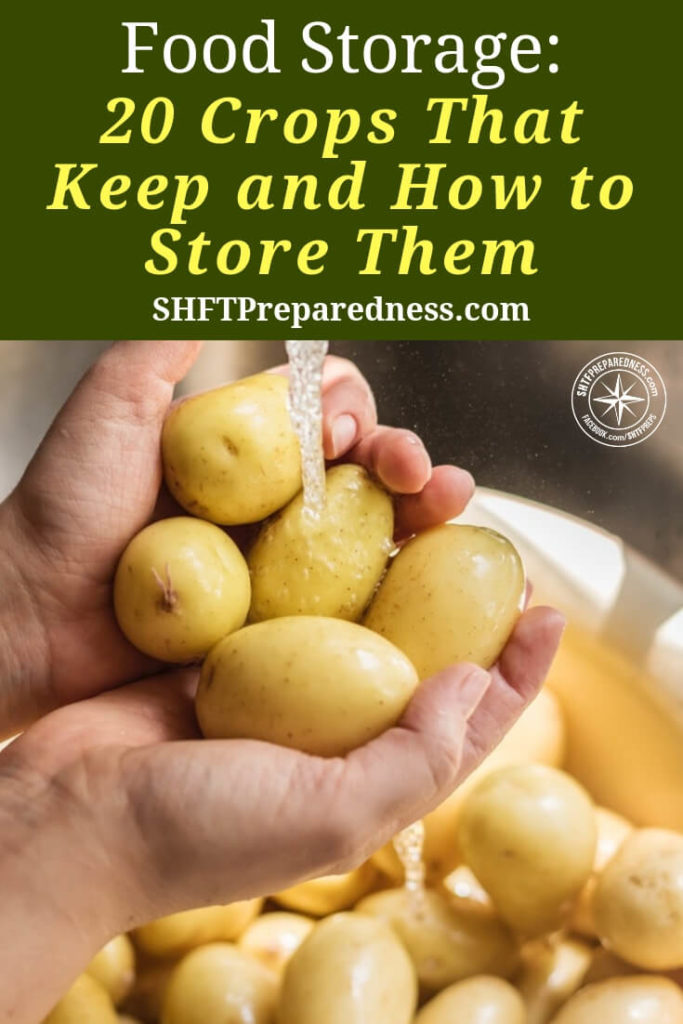 20 Crops That Keep and How to Store Them - Food storage is my families top priority it always has been and probably always will be. I feel pretty confident that in 5 years we will be spending minimal on our groceries.