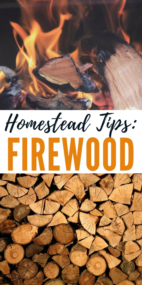 Homestead Tips: Firewood - This link includes a great video with some awesome tips on firewood. The video really plays like a nice story about cutting wood and seasoning it along with some great stories and information about the process. If you are planning on cutting wood or if you are new to using wood to warm your home you'll enjoy this video.