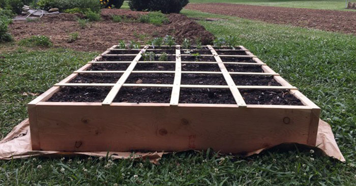 How to Build a Simple Raised Bed - This raised bed is model after the square foot gardening method. You will find that building your own raised bed is very cheap and easy to build. These little beds will change your gardening resume. I was growing food before raised beds but now I am growing multiple plants to excess.