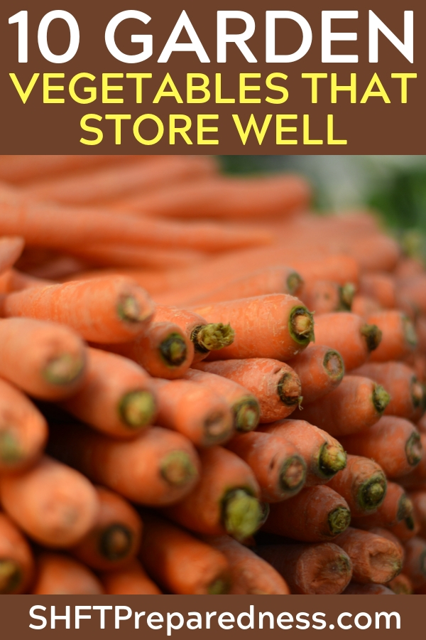Storing Vegetables: 10 Garden Vegetables That Store Well - Hardy vegetables are some of my favorites. As good as a fresh tomato is I prefer to grow turnips for their delicious tuber and their tangy greens. There are so many great hardy vegetables that grow in abundance and are highly resistant to issues