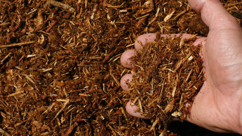 How to Make and Get Free Mulch