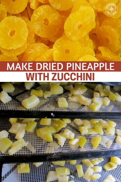 Make Dried Pineapple With Zucchini - Its a very sneaky way of getting people to commit to eating more vegetables without even knowing what they are eating.