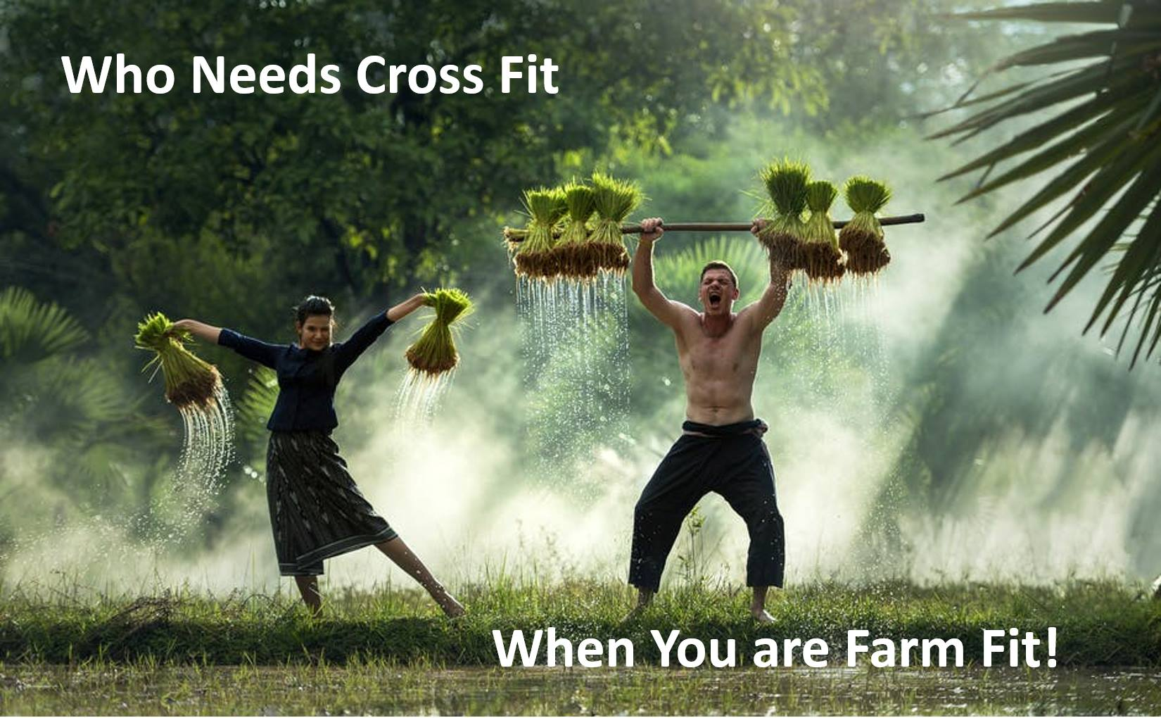 Who needs cross fit when you are farm fit!