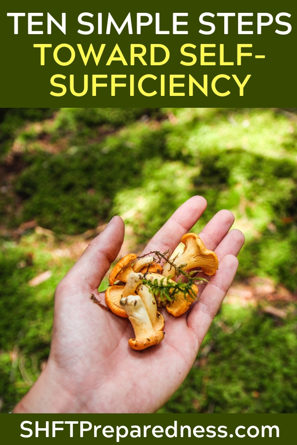 Ten Simple Steps Toward Self-Sufficiency - We would have to work hard, yes, but at the end of the day we would have the satisfaction of being able to take care of ourselves without selling out to greedsters or taking a handout from the government.