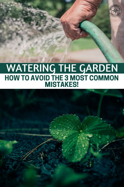 Watering The Garden – How To Avoid The 3 Most Common Mistakes! - This article was put together to offer three very common mistakes that gardeners face from improper watering. The author does a great job at explaining these three common mistakes.