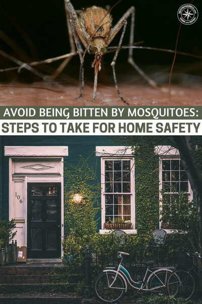 Avoid Being Bitten by Mosquitoes: Steps to Take for Home Safety - This author offers some great advice for dealing with the mosquito threat. The time that we spend on managing our yard to assure we are not harboring tons of mosquitos is minimal.