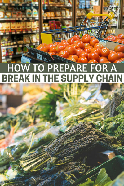 How To Prepare for a Break in the Supply Chain - We live in a 'just in time' system where things are delivered to the store just about the time they begin to run out. Gone are the days when stores would have warehouses where surplus stock was kept and rotated thru until a new shipment came in.