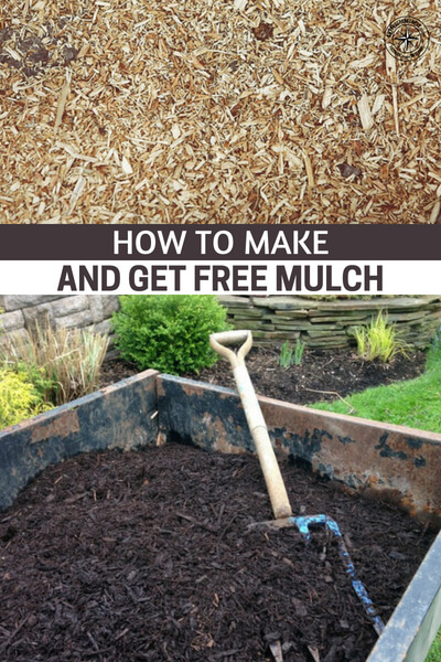 How to Make and Get Free Mulch - This article offers some great advice on the subject of mulch. It offers great ideas for items to be used as mulch. What I really enjoyed about this article are the many ways the author gets his mulch for free. There is only one thing better than mulching your plants and that's using free mulch to do it.