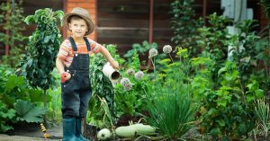 Kids and Gardening: Fertilizing Our Future - This engrained behavior is learned and it teaches your kids a lot more about life than just what to eat. This is a great author that explores the possibilities of saying yes and getting kids involved in your home garden.