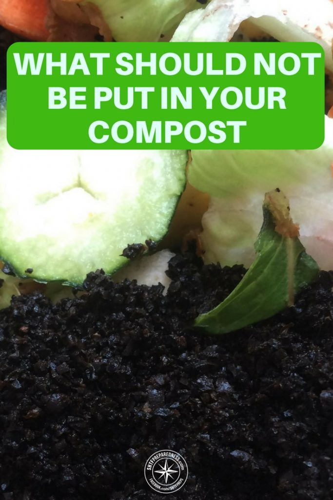 What Should Not Be Put In Your Compost - People around the world now want to reduce their carbon footprint. What better way than to recycle waste and give back to the earth.