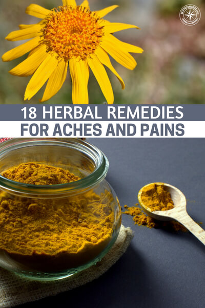 18 Herbal Remedies for Aches and Pains - If you look into history, all of the medicine that has gotten us to present day started with flowers, roots, and herbs. A lot of this knowledge has been lost but there is a growing movement that is rekindling the interest and use of more natural medicines.