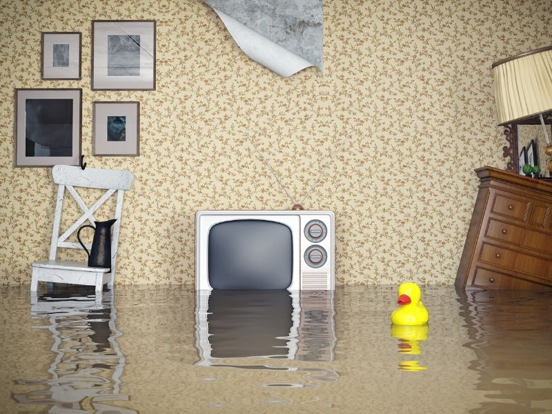 When a natural disaster, like flooding, strikes, you might not have much control. Remember these flood safety tips, and you'll avoid much of the trouble.