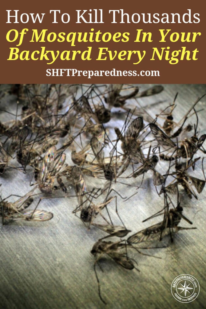 How To Kill Thousands Of Mosquitoes In Your Backyard Every Night - Not only are mosquitoes one of the most annoying things in the world they are also carriers of incredibly dangerous diseases. The thing we forget about management of mosquitoes is that they are poisoned in mass all the time by our local governments.