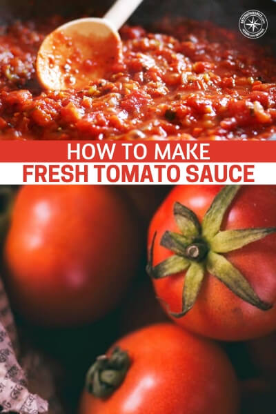 How To Make Fresh Tomato Sauce (Italian Secret Recipe!) - It was safe to say that this recipe rocked our taste buds. It's a hassle to make any sauce from scratch but let me tell you now that it is so worth the time and effort to make this.