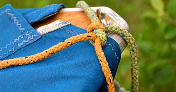Top 7 Knots You Should Know For Survival - This is a great article on 7 knots that are all pictured in the article. There are brief descriptions about the value of each knot as well. You can take wrangle your knot tying skills back from the clutches of history. With very little practice you can become a paracord wizard.