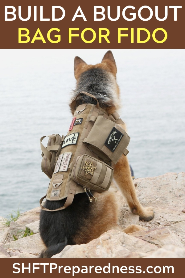 The Dog Out Bag - The article opens with the many reasons dogs are mans best friend. It also talks about why dogs could be mans best friend in survival. From there you get a great look at some items to include in your dogs bugout bag. The article is easy to read and laid out well.