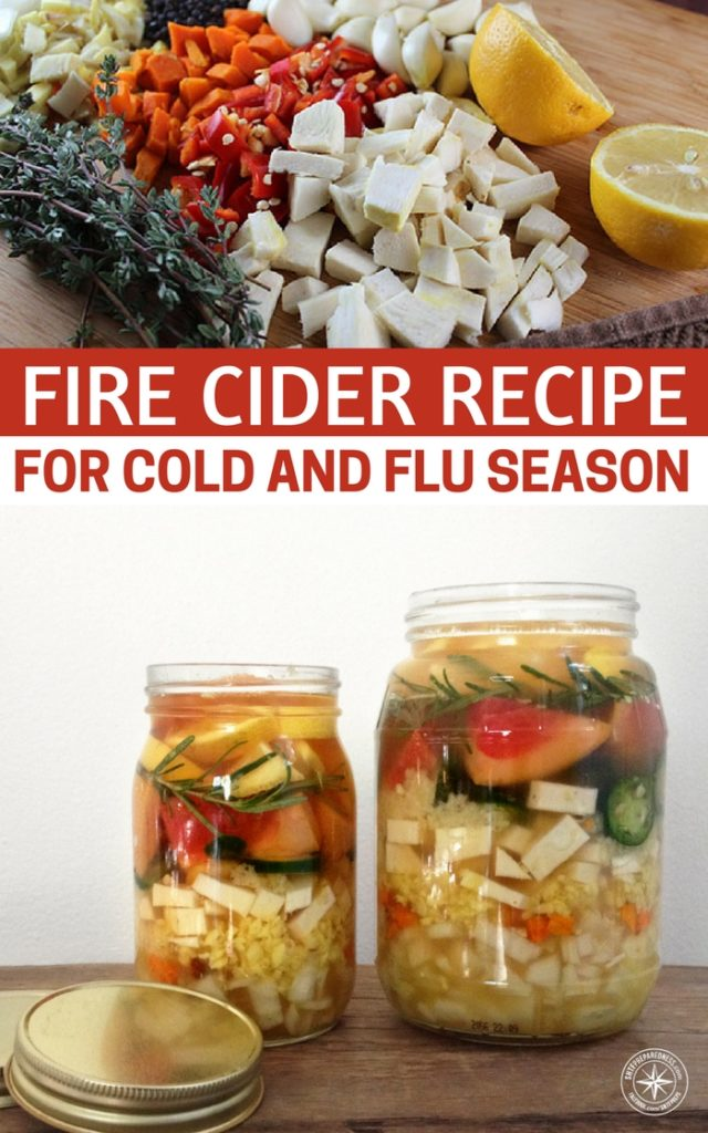 Fire Cider Recipe For Cold and Flu Season - We use Fire Cider as a tonic. We have always been drawn to the flavors of its ingredients and drink small amounts daily starting in the fall and all throughout the winter months. This recipe is an inexpensive, effective way to treat or stave off colds & flus, and to break up congestion.