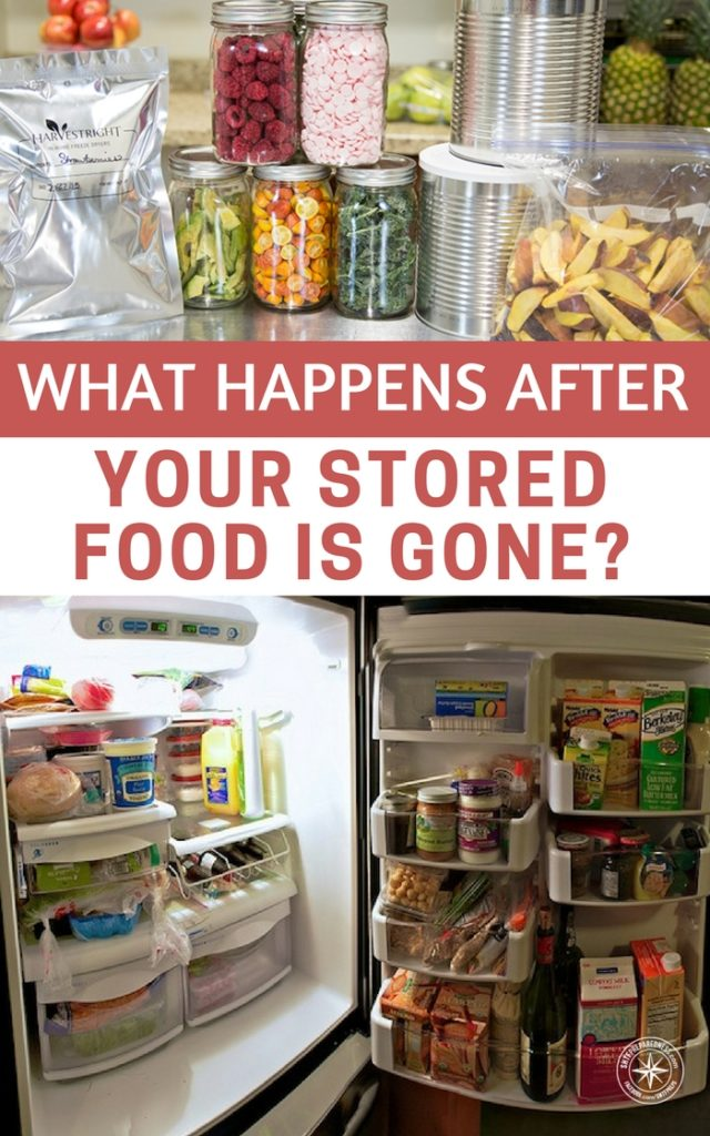 What Should You Do After Eating Gone Off Food